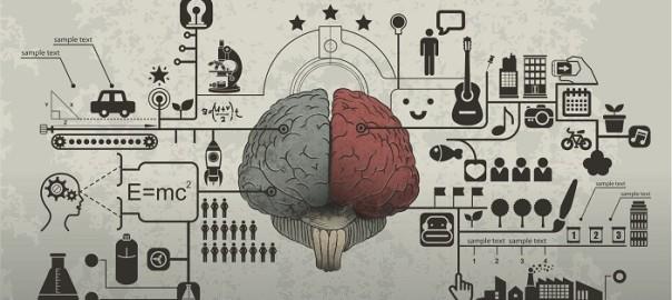 brain_cover3